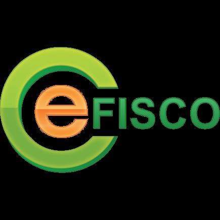 Rozwiń swój zespół z Efisco